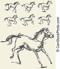 Horse Set Hand-drawn Vector illustration Phase of the...