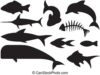 fish icons set dolphin, fish bone, carp fish, shark, whale,...