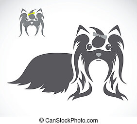 Vector image of an shih tzu dog on white background