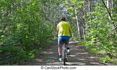 Summer rider - Rear view of a fit guy riding a bicycle in...