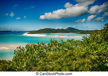 Wonderful sea and forest of Queensland. Whitehaven Beach -...