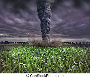 large tornado over the meadow (photo and 3D elements...