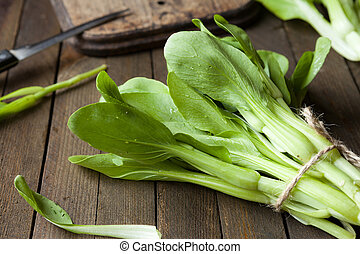 bunch bok choy on the table, close up food