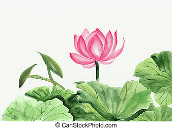 Watercolor painting of pink lotus flower - Original art,...