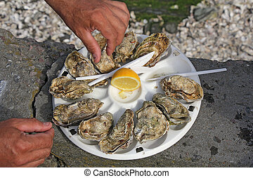 Fresh oysters2 - Fresh oysters as well as fine dining,...
