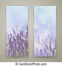 Vector Lavender Banners - Vector Illustration of Two...
