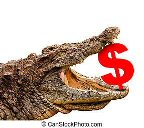 Dollar symbol eaten by crocodile for sale, crash or...