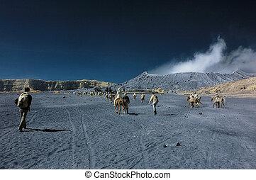 Tourists having fun at Bromo mount