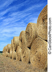 Straw Bales by Edge of Field