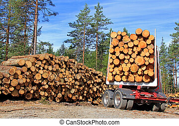 Timber Trailer and Stack of Logs