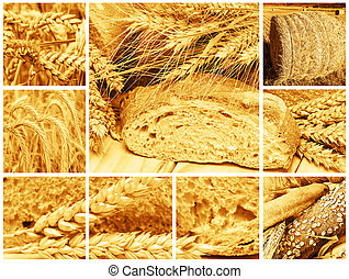 Bread and cereals - Collage made of pictures about bread and...