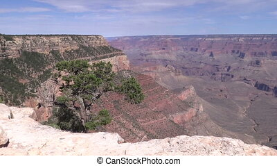 Grand Canyon Landscape - a scenic landscape of the grand...