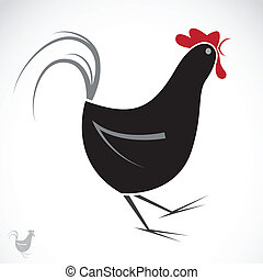 Vector image of an chicken on white background