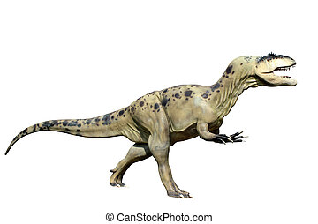 tyrannosaurus, Rex, aislado, blanco, Plano de fondo