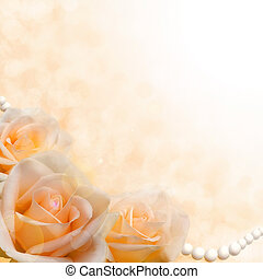 soft cream roses on blurred background