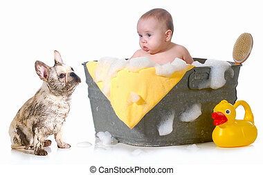 baby and puppy getting bath - baby and dirty puppy getting...