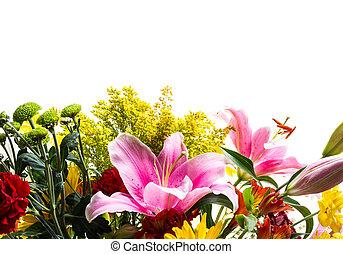 Flower border