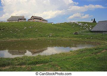 Alpine puddle in the rain, Slovenija - Alpine puddle in the...