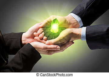 Sprout in hands - Young green sprout in human hands. Ecology...