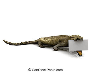 Crocodile with sign - A big crocodile with a blank sign in...