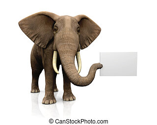 Elephant with sign - A big elephant holding a blank sign in...