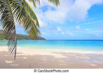 Tropical beach Anse Lazio - Deserted beach Anse Lazio on the...