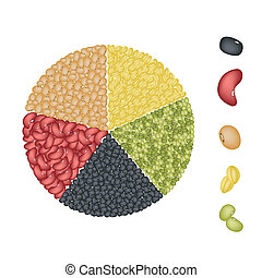 Set of Beans in Pie Chart Concept - An Illustration...