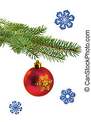 christmas tree branch with red ball - Red ball on christmas...
