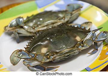 Blue sea crab in a plate