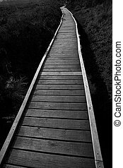 Walkway - A wooden walkway winds through low coastal bushes