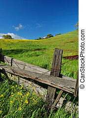 spring countryside - the countryside of northern California...