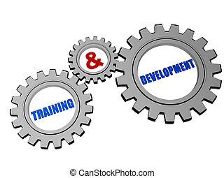 training & development in silver grey gears - training and...