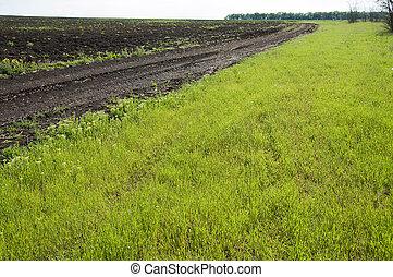 rural road near field