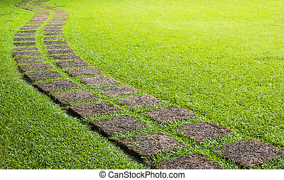 Walk way in greeen field during sunny day