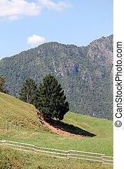 landscape mountain