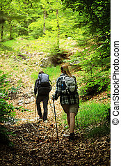 Nordic Walking - Young couple nordic walking on path in the...