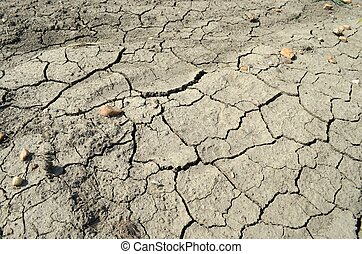 fissured earth