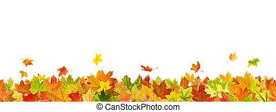 Seamless autumn leaves - Seamless pattern of maple autumn...