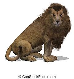 Big Cat Lion Male - Dangerous Big Cat Male Lion With...