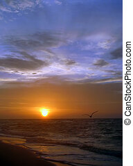 beach sunrise - a beautiful sunrise on Sanibel Island...