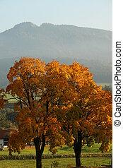 Kroatien - , Haslach, Bavaria, Germany, Europe.