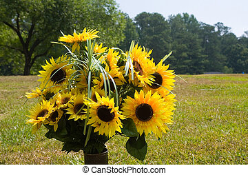 Sunflowers in Vase in Field - A vase of bright sunflowers in...