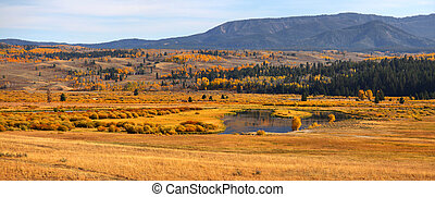 Autumn in Yellowstone - Panoramic view of autumn landscape...