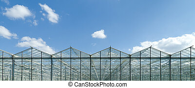 greenhouse exterior - exterior of a commercial greenhouse in...