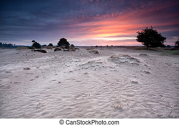 dramatic sunrise over sand dunes