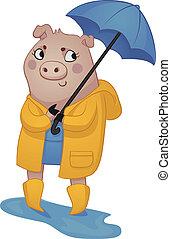 Cartoon Pig in Rain Gear. - Vector illustration of a cartoon...
