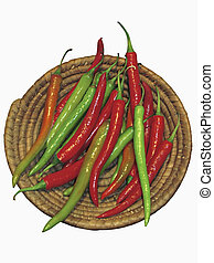 Common Chili, Capsicum annuum, Red and green chilies are...