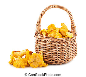 Chanterelle mushrooms in wicker basket isolated on white...