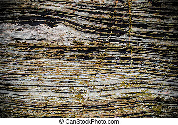 layered rock texture  - layered rock texture