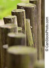 Line of wooden beams - The close up view of wooden beams